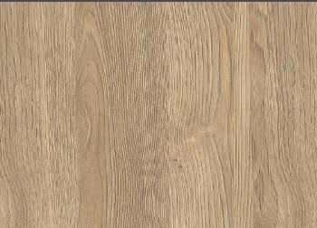 Regal Oak